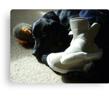 Domestic Bliss (dog at mistress' feet with toy)  Canvas Print