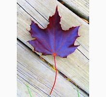 Leaf from Red Maple Tree Unisex T-Shirt