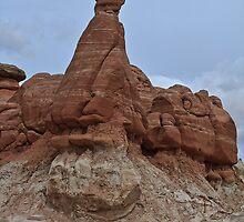 Arizona Toadstool by Anne McKinnell