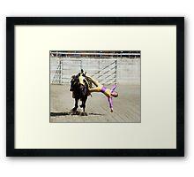 RES 2010 - 31 Framed Print