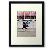 RES 2010 - 34 Framed Print