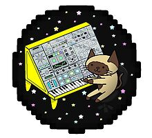 Modular Synth Cat by Luke Kemeny