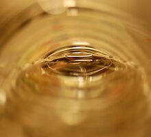 Inside bottle of water by RoseWade