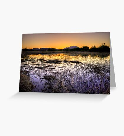 The Purple and the Orange Greeting Card