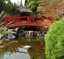 Japanese Garden 2 by Jeffrey Sims