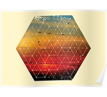 Nature and Geometry Flying Birds Poster