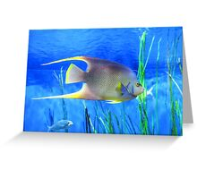 Into Blue - Tropical Fish by Sharon Cummings Greeting Card