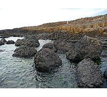 Giant's Causeway - Ireland Photographic Print