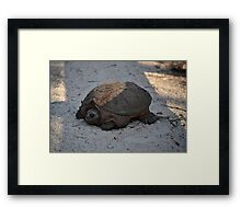 ...So Here I Was... Framed Print