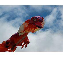 Go Fly a Kite Photographic Print