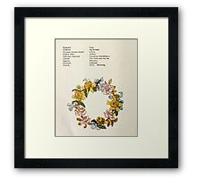 Language of Flowers Kate Greenaway 1884 0018 Descriptions of Specific Flower Significations Framed Print