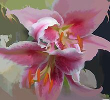 Painted version of the Fantasy Lily by hilarydougill