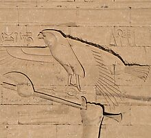 Eagle Hieroglyph by rhallam