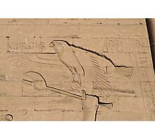 Eagle Hieroglyph Photographic Print