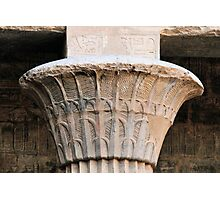papyrus column Photographic Print
