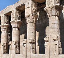 Columns at Edfu Temple 2 by rhallam