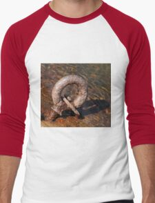 Rusty Ring Men's Baseball ¾ T-Shirt