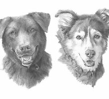 Family dogs drawing by Mike Theuer