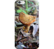 Flat head mushroom iPhone Case/Skin