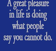 PLEASURE, A great pleasure in life is doing what people say you cannot do. by TOM HILL - Designer