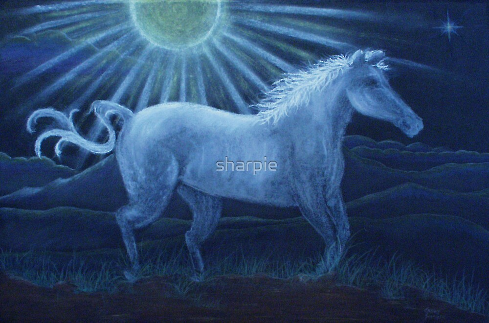 Harvest Moon White Horse by sharpie
