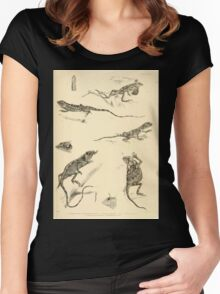 The Reptiles of British India by Albert C L G Gunther 1864 0507 Sitana Minor, Japalura Swinhonis, Trapelus Megalonyx, Calotes Nigrilabris, etc Women's Fitted Scoop T-Shirt