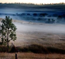 Blue Dawn, Central Queensland by Ian Beattie