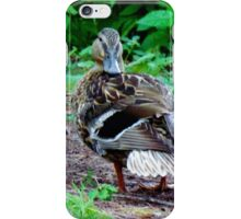 Duck Checking Things Out iPhone Case/Skin