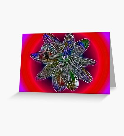 Pure Passion... flower that is.. Greeting Card
