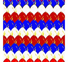 Red White & Blue Scales Photographic Print