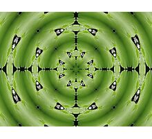 giant lily pad abstract Photographic Print