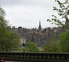 Edinburgh old town from Princes Street Gardens by BronReid