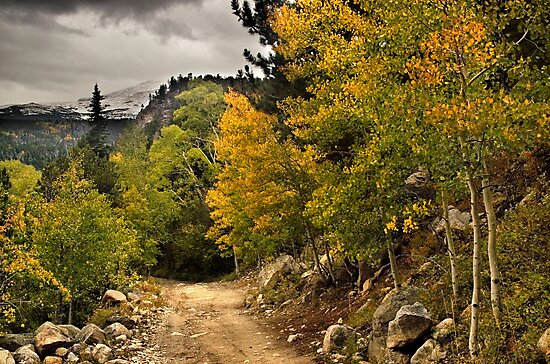 The Trail To Autumn by John  De Bord Photography