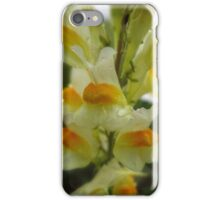Butter and Eggs iPhone Case/Skin