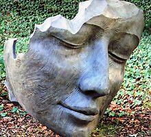 Face sculpture 2 by rhallam