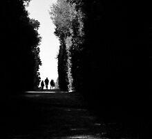 Walking Away by Tom Palmer