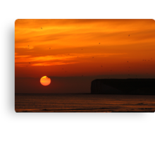Late Evening Sunset Canvas Print