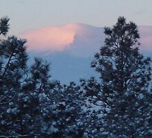Pikes Peak Snowy Morning by Paul  Richardson