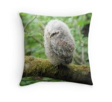 Baby Tawny Owl Throw Pillow