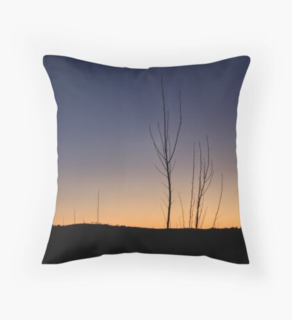 Sparse Throw Pillow