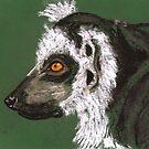 Ringtailed Lemur by Dawn B Davies-McIninch