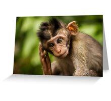 Macaca Fascicularis Greeting Card