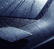 Water droplets 2 by Ian Tester