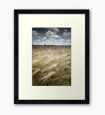 Summers Tide Framed Print