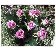 Baby's Breath and Roses Poster
