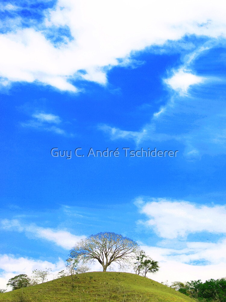A single tree on the top by Guy C. André Tschiderer
