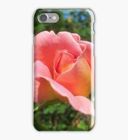 Laughter Rosebud iPhone Case/Skin