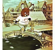 Teddy Photographic Print