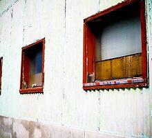 Windows by Amy Francen