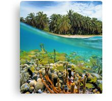 Coral reef fish underwater and coconut trees Canvas Print